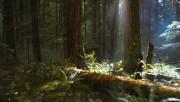 Trailers / Clips / Spots de Amanecer Part 2 - Página 4 172696215994496