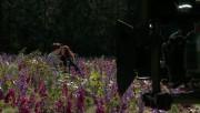 Trailers / Clips / Spots de Amanecer Part 2 - Página 4 6b43a3215994507