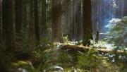Trailers / Clips / Spots de Amanecer Part 2 - Página 4 916ca8215994490