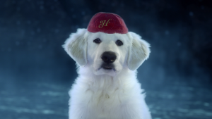 Przyjaciel ¶wiêtego Miko³aja 2: ¶wi±teczne szczeniaki / Santa paws 2 (2012) PL.1080p.BD9-SLiSU / Lektor PL