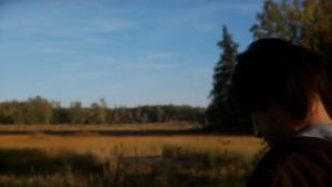 Szare niebo / Grey Skies (2010) PL.DVDRiP.XviD-LaNK / Lektor PL
