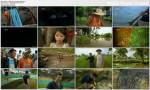 Polowanie na krokodyla potwora / Monster Croc Hunt (2012) PL.HDTV.1080i / Lektor PL