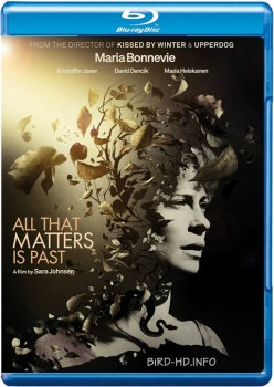 All That Matters Is Past 2012 m720p BluRay x264-BiRD