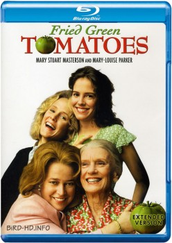 Fried Green Tomatoes 1991 EXTENDED m720p BluRay x264-BiRD