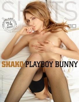 Hegre Art - Playboy Bunny (2013)