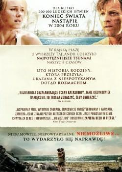 Tył ulotki filmu 'Niemożliwe'