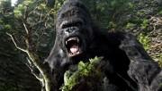 Кинг Конг / King Kong (Наоми Уоттс, Эдриен Броуди, Джэк Блэк, 2005) 334d36294373428