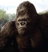 Кинг Конг / King Kong (Наоми Уоттс, Эдриен Броуди, Джэк Блэк, 2005) A623cf294374657