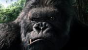 Кинг Конг / King Kong (Наоми Уоттс, Эдриен Броуди, Джэк Блэк, 2005) A6f68d294372349