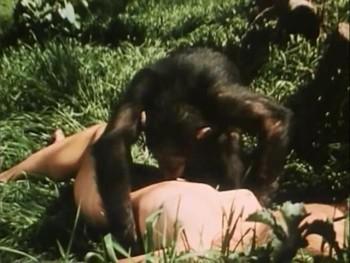 Africa Erotica An Happening In Africa 28