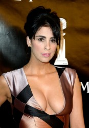 Sarah Silverman at the Hollywood Foreign Press Association's Annual Grants Banquet in Beverly Hills - 8/13/15