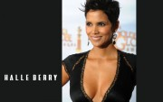 Halle Berry : Hot Wallpapers x 29 (2 of 2)