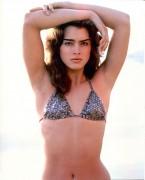 Brooke Shields - unknown bikini photoshoot x1