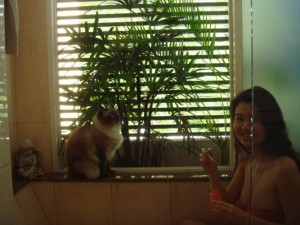 gwendolyn wan love cats and dogs 02