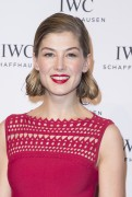 Rosamund Pike -         SIHH Gala Dinner Photocall Geneva January 19th 2016.