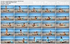 http://thumbnails105.imagebam.com/46047/6a1c49460463285.jpg