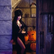 anya the mistress of darkness Elvira, mistress of the dark is a 1988 american comedy horror film directed by james signorelli cassandra peterson plays the role of horror hostess elvira in the character's feature film debut.