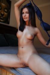 http://thumbnails105.imagebam.com/46648/66063f466474224.jpg