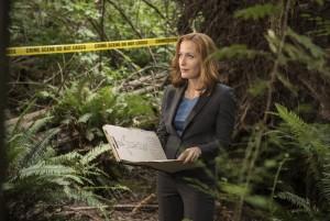 Cекретные материалы / The X-Files (сериал 1993-2016) D74365467992860