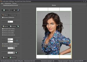 RonyaSoft Poster Printer 3.2.6 + Portable (ML/RUS)