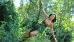 http://thumbnails105.imagebam.com/27430/6a9607274298026.jpg